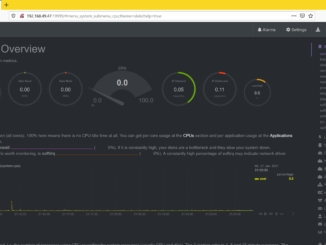 Debian netdata installieren - overview