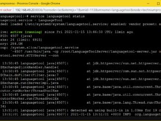 LanguageTool Server installieren - Tutorial - Service
