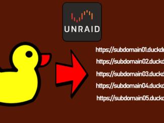 Duck-DNS