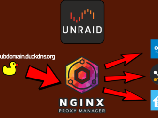 Ngnix Proxy Manager