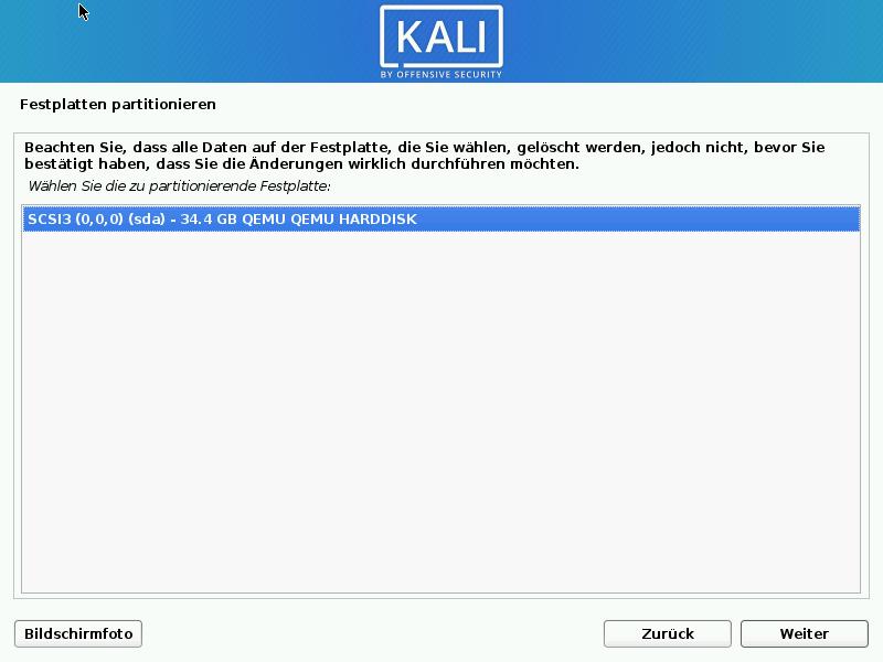 Kali Linux installieren - festplatte wählen