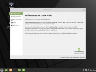 Linux Mint 20.1 installieren - installed
