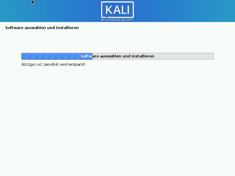 Kali Linux installieren - software installieren