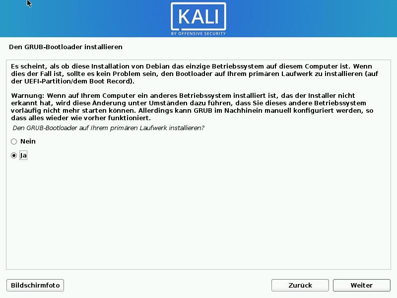 Kali Linux installieren - grub installieren