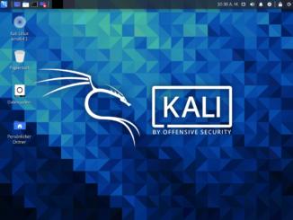 Kali Linux installieren - desktop