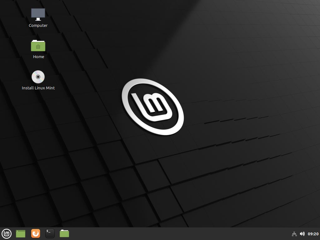 Linux Mint 20.1 installieren - install