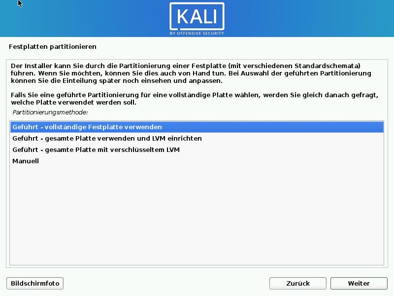Kali Linux installieren - festplatte